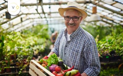 Agroenergia – fotowoltaika dla rolnika